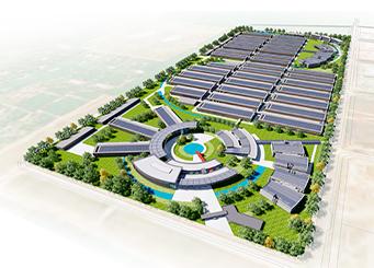 dự án nhà máy longwell